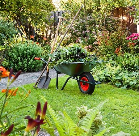 Entretien de jardin près de Mons, Charleroi et Maubeuge